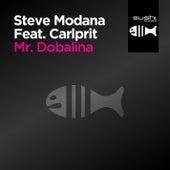 Mr. Dobalina von Steve Modana