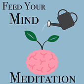 Feed Your Mind Meditation by Various Artists