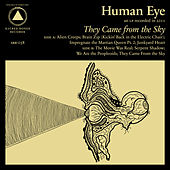 They Came From the Sky by Human Eye (Garage Rock)