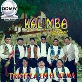 Tristeza en el Alma de Kalimba Del Perú