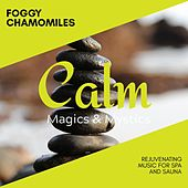 Foggy Chamomiles - Rejuvenating Music for Spa and Sauna de Various Artists