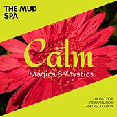 The Mud Spa - Music for Rejuvenation and Relaxation de Various Artists