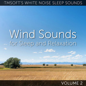 Wind Sounds for Sleep and Relaxation Volume 2 by Tmsoft's White Noise Sleep Sounds