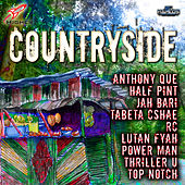 Country Side Riddim by Various Artists