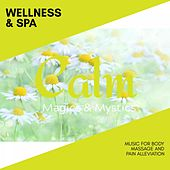 Wellness & Spa - Music for Body Massage and Pain Alleviation de Various Artists
