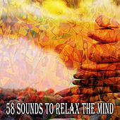 58 Sounds to Relax the Mind by Relaxing Mindfulness Meditation Relaxation Maestro