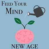 Feed Your Mind New Age by Various Artists