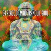 54 Peace of Mind Tranquil Soul de Zen Meditate