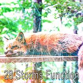 28 Storms Function by Rain Sounds and White Noise