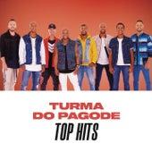 Turma do Pagode Top Hits de Turma do Pagode