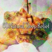 60 Natural Sleep Relief de Smart Baby Lullaby