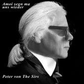 Amoi segn ma uns wieder de Peter von the Sirs