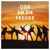 Ode an die Freude de Various Artists