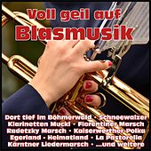 Voll geil auf Blasmusik by Various Artists