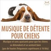 Musique de Détente Pour Chiens - Musique et sons apaisants pour que les chiens se détendent et se sentent bien (pas de hautes fréquences supérieures à 16 khz) von Musique de Chien TA