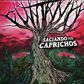 Saciando Tus Caprichos by Puntano