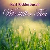 Wie stiller Tau by Karl Ridderbusch