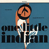 One Little Indian - Greatest Hits (Vol. 2) by Various Artists