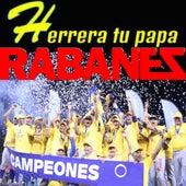 Herrera Tu Papa by Los Rabanes