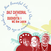 How Beautiful (she is) by Salt Cathedral