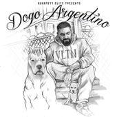 DOGO ARGENTINO von Fard