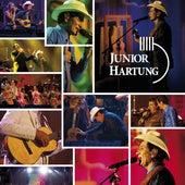 Orquestra de Todos Encantos, Vol. 2 de Junior Hartung