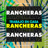 Trabajo en casa Rancheras de Various Artists