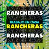 Trabajo en casa Rancheras by Various Artists