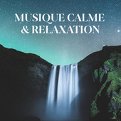 Musique calme & relaxation de Various Artists