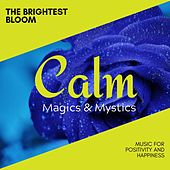 The Brightest Bloom - Music for Positivity and Happiness von Various Artists