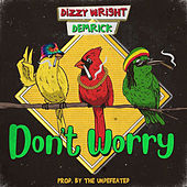 Don't Worry von Dizzy Wright