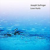 Love Hurts (Instrumental) by Joseph Sullinger