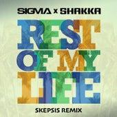 Rest Of My Life (Skepsis Remix) de Sigma