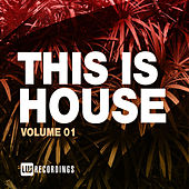 This Is House, Vol. 01 by Various Artists