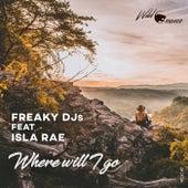 Where Will I Go by Freaky DJ's