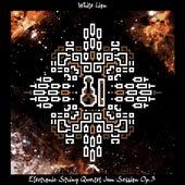 Electronic String Quartet Jam Session Op.3 von White Lion