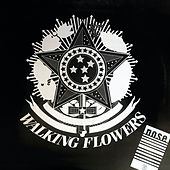 No Se (Remember 90) (Edición Remasterizada) de Walking Flowers