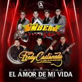 El Amor De Mi Vida (feat. Los Rumberos Star) de Fredy Castañeda y los Muchachos