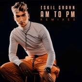 AM to PM (Remixes) de Eskil Grahn