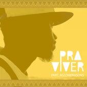 Pra Viver by Nouve