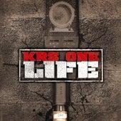 Life de KRS-One