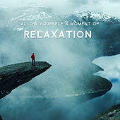 Allow Yourself a Moment of Relaxation – Total Comfort,  Music for Serenity, Healing Noise von Ambient Music Therapy