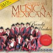 Las Estrellas De La Musica Mexicana de Banda Machos