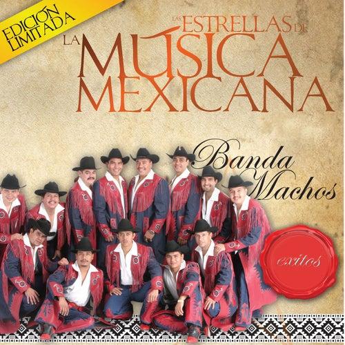 Las Estrellas De La Musica Mexicana by Banda Machos