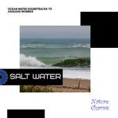 Salt Water - Ocean Water Soundtracks to Assuage Worries de Various