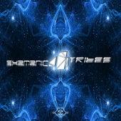 Shamanic Tribes Vol. 4 von Various Artists