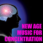New Age Music For Concentration by Various Artists