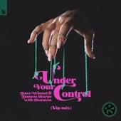 Under Your Control (VIP Mix) von Dave Winnel