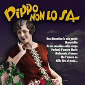 Pippo non lo sa by Various Artists