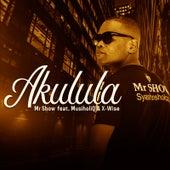 Akulula by Mr Show